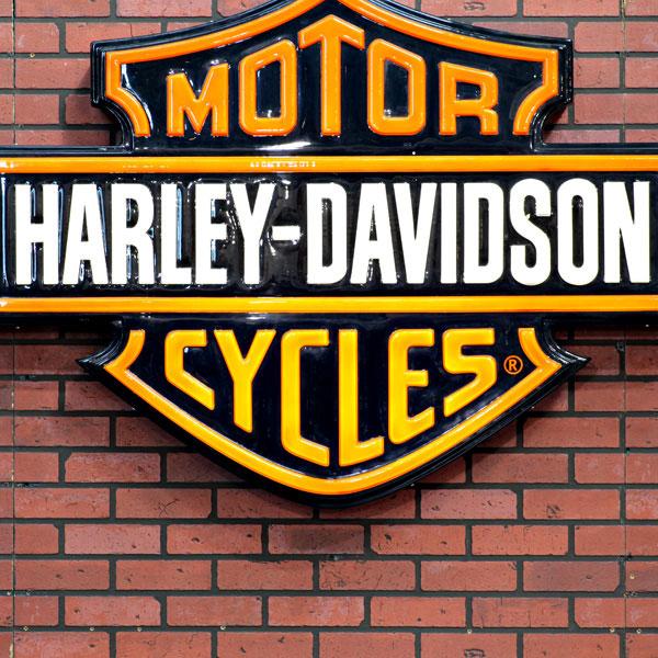 """ejemplo de marca mixta """"harley davidson"""" en hazlomarca.mx"""